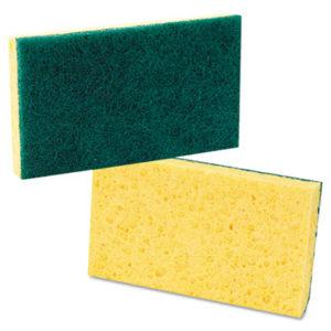 Sponges & Scouring